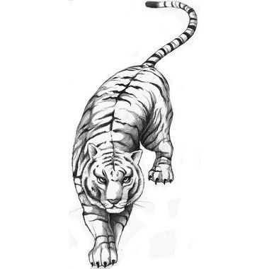 24 Cool Tiger Tattoos – Desiznworld