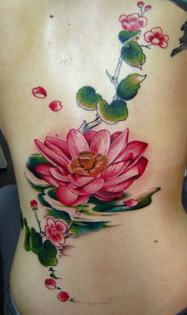 Japanese lotus flower