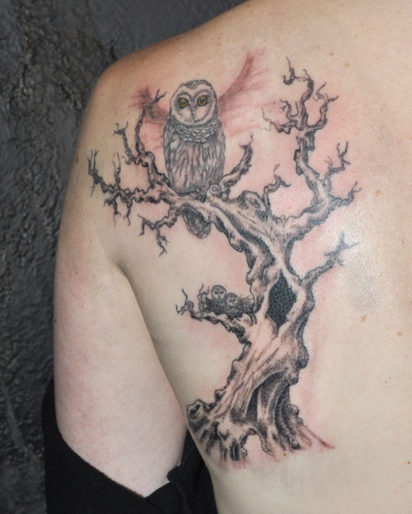 tree tattoo with owl on back