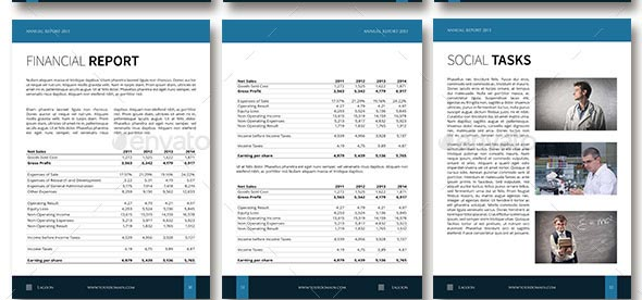Professional Indesign Annual Report Templates  Desiznworld