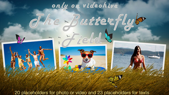 Photo Slideshow Butterfly Field