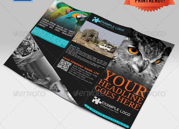 Adventure Travel Brochure