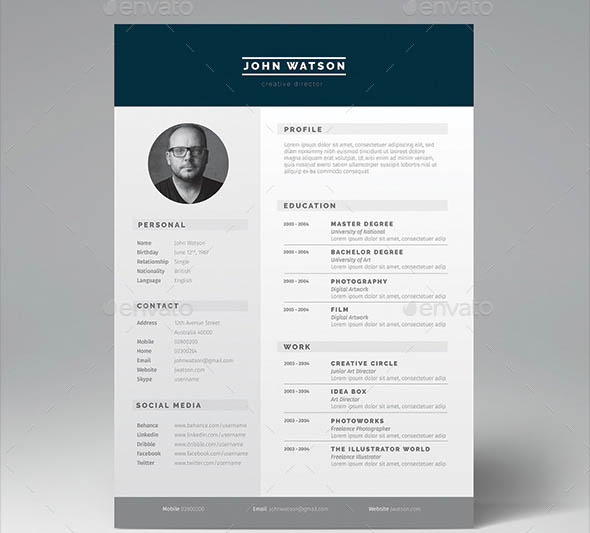 16 great resume indesign templates desiznworld. Black Bedroom Furniture Sets. Home Design Ideas