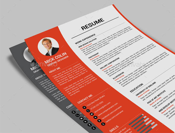 one pages resume template - Indesign Template Resume