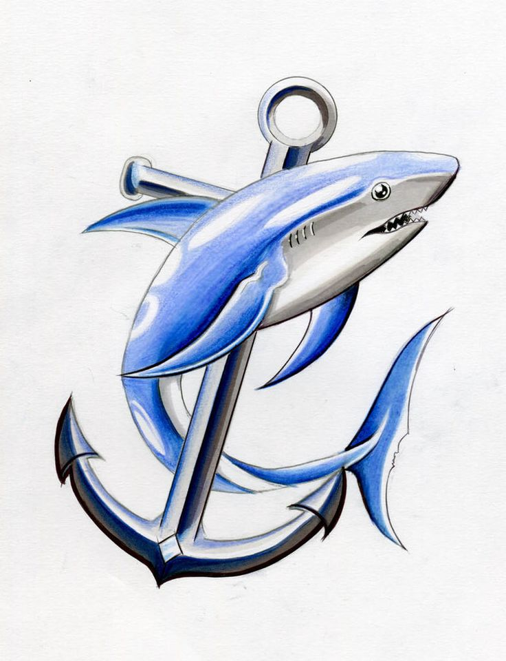 Shark & Archor Tattoo