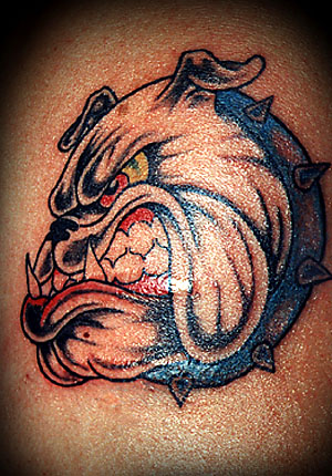 Angry Bulldog Tattoo