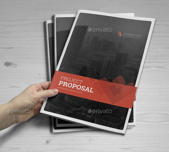 Project & Business Proposal Indesign Template v4