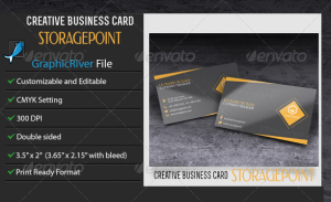 Business Card – StoragePoint