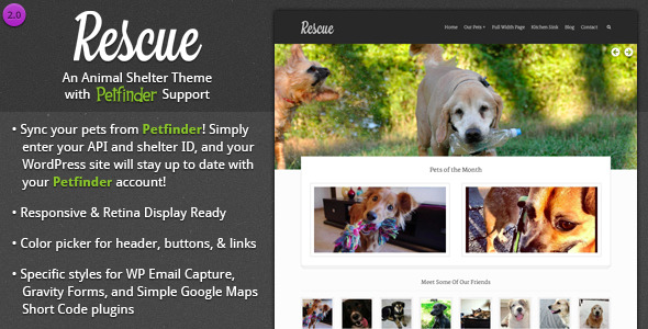 Rescue Animal Shelter Theme Petfinder Support