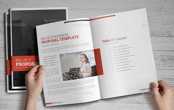 Project Business Proposal Indesign Template