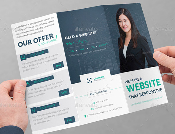 Triund Web Business Tri-Fold Brochure