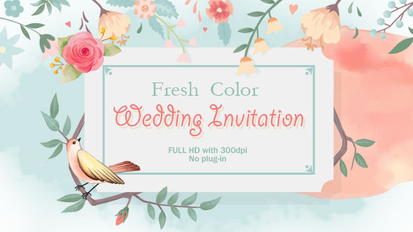 Fresh Color Wedding Invitation