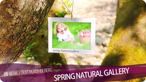 Spring Natural Gallery
