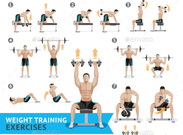 weight exercises 590